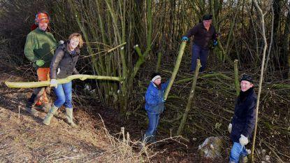 Vrijwilligers helpen met het snoeien en plaatsen van een takkenril
