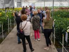 Dutch Lily Days gaan niet door, organisatie verplaatst evenement alsnog naar 2022