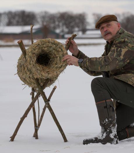 Sallandse jagers schieten eenden in nood te hulp: 'In een korf kunnen kuikens veilig opgroeien'