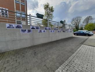 Inwoners van Aarsele, Kanegem en Schuiferskapelle lachen bezoekers van het vaccinatiecentrum toe