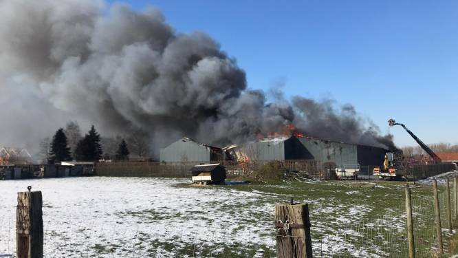 Zwarte rookpluim bij uitslaande brand in houtzagerij in Aalter tot kilometers ver te zien