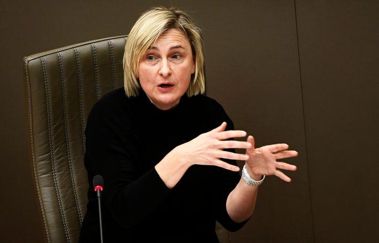 Vlaams minister van Economie Hilde Crevits (CD&V) zei dat vanuit Vlaanderen 28 dossiers zijn doorgespeeld. Beeld Photo News