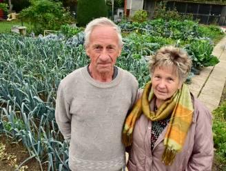 Na monsterbrand bij Belcroom: omwonenden mogen weer groenten eten uit eigen tuin en regenwater gebruiken