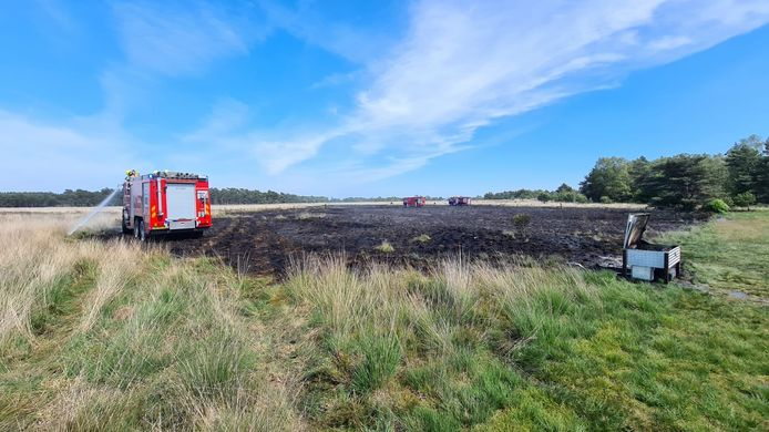 De hei die verwoest is door brand in Terlet