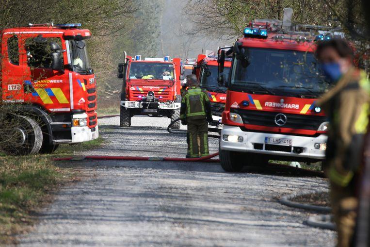 Brandweermannen op militair domein in Brecht. Beeld Photo News