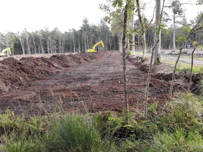 De voorbije weken werd in het Drongengoed geplagd, dat is het wegschrapen van de bovenlaag van de bodem.