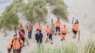 Ruiters te paard kunnen recht naar zee door de duinen via een nieuw pad