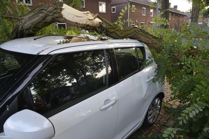 In de Van der Duyn van Maasdamstraat in Breda viel een forse boomtak op de Suzuki Swift van straatbewoner Carina.