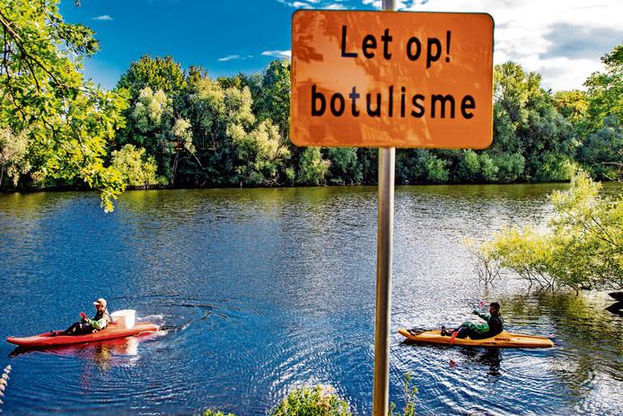 Foto archief, ter illustratie. Foto van vorig jaar, toen botulisme werd vastgesteld in de Venenkolk. Het waterschap vermoedt nu botulisme  in de vijvers langs de Margijnenenk, Willem de Zwijgerlaan en Wilhelminalaan in Deventer.