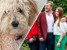 Gaus over nieuw gezinslid Oranjes: 'Een hond met een leeuwenhart'