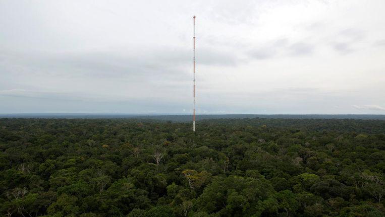 De observatietoren in het Amazonewoud, 320 meter hoog. Beeld reuters