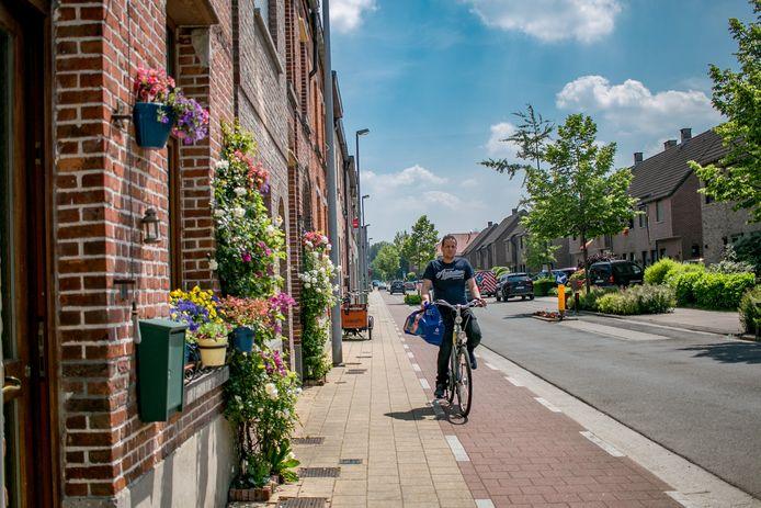 """'Een geveltuin maakt een groot verschil"""". In Sint-Niklaas geeft de stad de bewoners van enkele tientallen straten gratis de kans om zo'n geveltuin te laten aanleggen."""