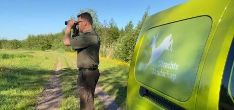 Beheerder slaat alarm: 'Natuurgebied Bloeidaal bij Amersfoort verdroogt en snakt naar water'
