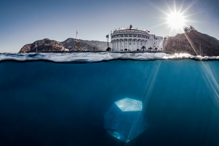 null Beeld Shawn Heinrichs/Patrick Fallon Underwater Pavilions, 2016, installation view, Avalon, California. Courtesy of the Artist, Parley for the Oceans and The Museum of Contemporary Art, Los Angeles