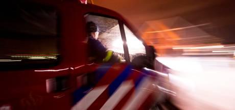 Hond zit vast in mestput: brandweer schiet te hulp