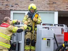 Papegaai neemt de benen in Nijkerk, brandweer komt in actie