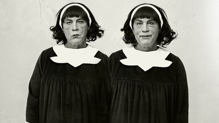 Identical Twins, van Diane Arbus Beeld Sandro Miller