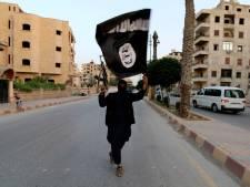 Den Haag tolereert geen ISIS-vlaggen
