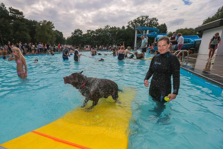 Voor een dag konden honden zich uitleven in het openluchtzwembad van Terlaemen.