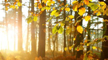 Temperatuur verbreekt tweede dag op rij record: 23,8 graden, warmste 14 oktober sinds begin metingen