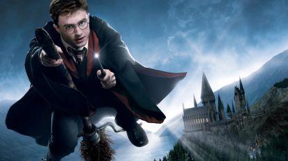 Deze Harry Potter-cruise is de ideale vakantie voor elke superfan