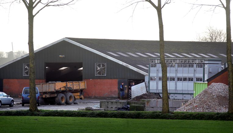 Inmiddels vijftien procent van de Nederlandse boeren benaderd met de vraag of zij tegen een ruime vergoeding vrijstaande stallen of loodsen willen afstaan. Beeld ANP