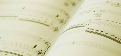 Wouter van den Boogaard wint grote prijs voor 'mediamuziek'