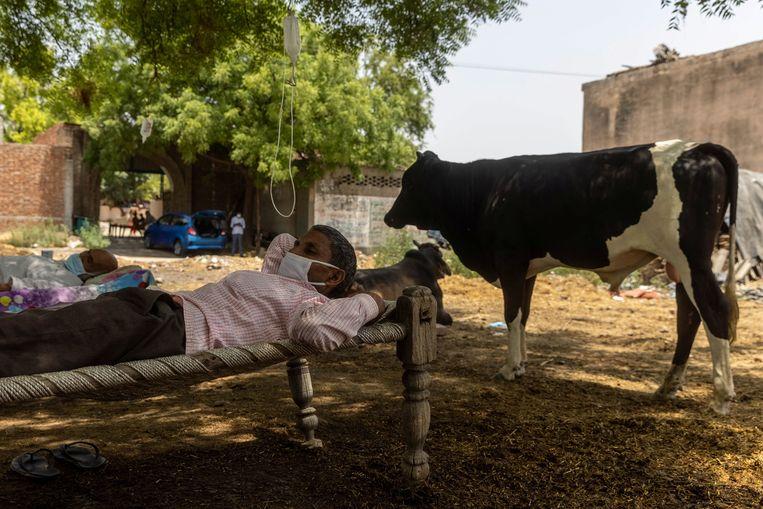 Een geïmproviseerde openluchtkliniek in de noordelijke staat Uttar Pradesh.  Beeld Reuters