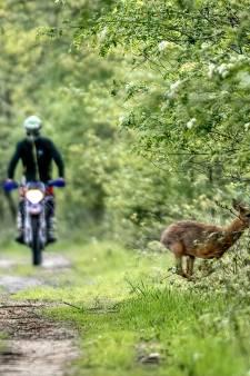 Drachtige ree vlucht voor motorcrosser die natuur verstoort: bijzondere foto op markant moment