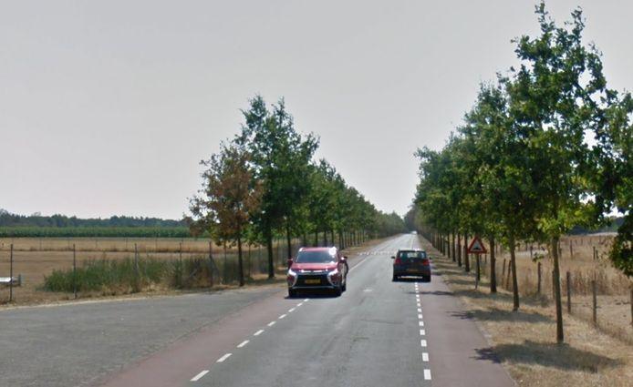 De Telefoonweg in Renkum gefotografeerd op een warme zomerdag. Voor het opknappen van de fietsstroken is het nu te nat en te koud.