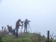 Elke dag vogels tellen, vanaf zonsondergang: 'we missen wel veel door de mist'