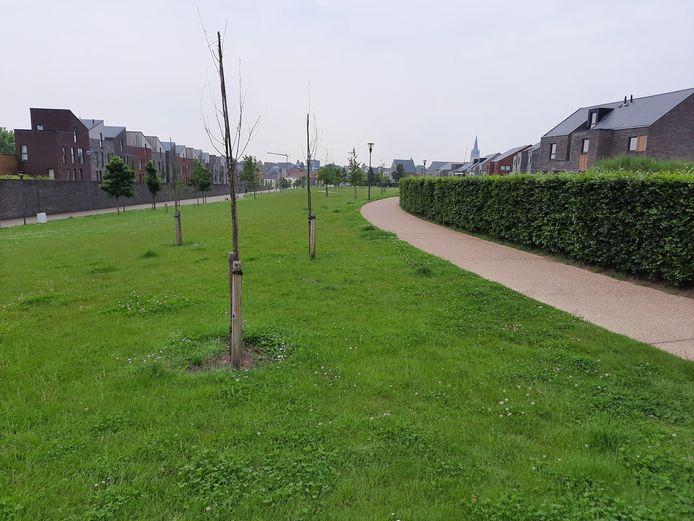 De Stadstuin, een groene long van 11 hectare zonder reglement voor de gebruikers.