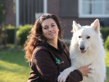 Hondentrainster Suzanne uit IJsselmuiden wacht nog steeds op haar vergunning: 'Te belachelijk voor woorden'
