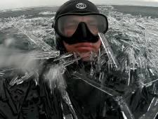 Il nage dans un océan d'aiguilles de glace