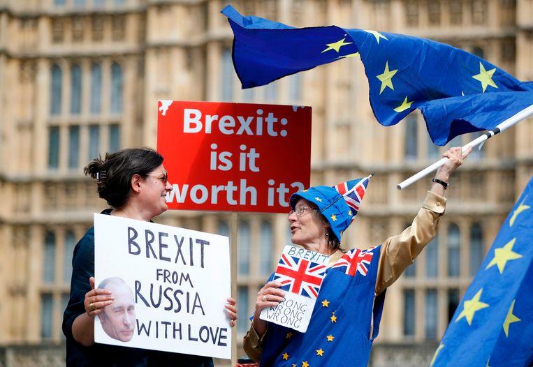 Anti-brexitdemonstranten uiten hun ontevredenheid buiten het Palace of Westminster in Londen op 4 juli 2018. Beeld AFP