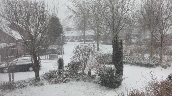 Een witte woonwijk in Malden
