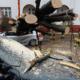 Extreme wind: 4 mensen overlijden door storm in Europa