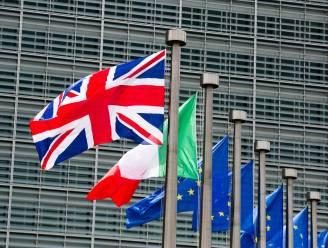 Vooraanstaande econoom verwijt politici dat ze ware reden voor Brexit verzwijgen
