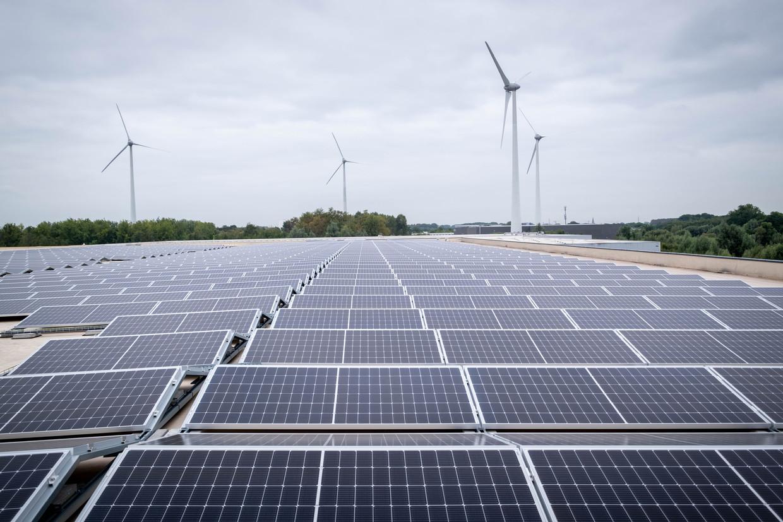 Kris Voorspools: 'Het sociaal tarief van de energiefactuur kost de maatschappij 1.000 euro per jaar voor één gezin. Dat telt na 5 jaar op tot 5.000 euro, precies de kost van de installatie van zonnepanelen bij dat gezin.' Beeld David Legreve