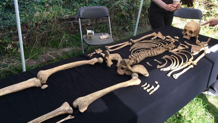 Onder de grond kan je vanalles vinden, zelfs een skelet