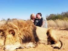 Verontwaardiging over zoenende trofeejagers die poseren bij doodgeschoten leeuw