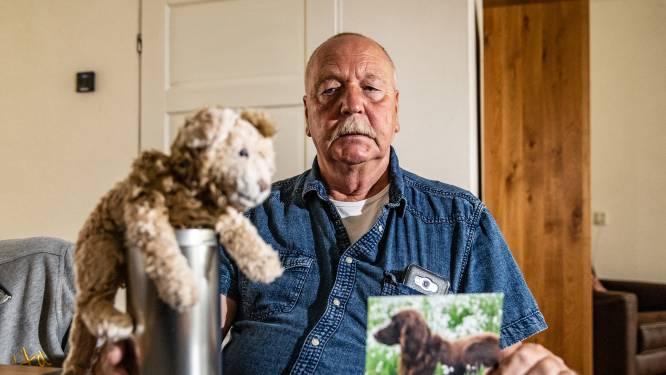 Tweede aanval van bulldog wordt hond van Martin  fataal: 'Hij had geen schijn van kans'