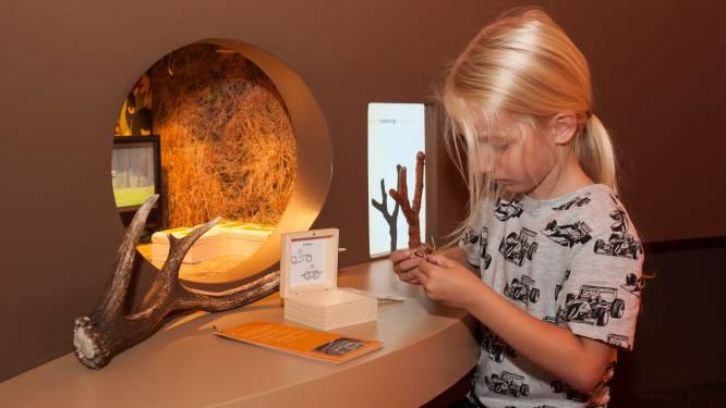 Tilburgse musea hebben tonnen aan gemiste inkomsten: 'Er komen uitdagende jaren aan'
