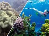 Unesco stemt over Barrièrerif op werelderfgoedlijst