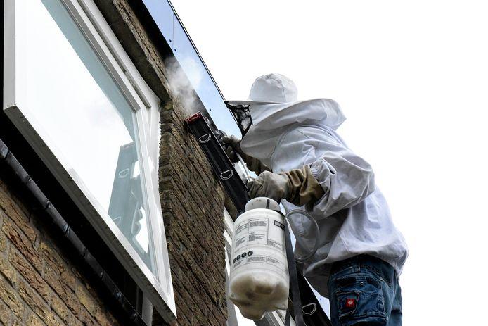 Albert Kromwijk bezig met het bestrijden van een wespennest.