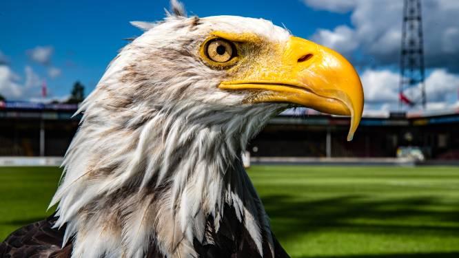 Hoe vogelgriep in Heeten ervoor zorgt dat de mascotte van Go Ahead Eagles Deventer niet meer in mag