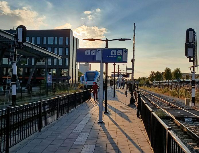 Reizigers op station Doetinchem proberen alternatief vervoer te regelen. Ook de treinen van Arriva rijden niet.