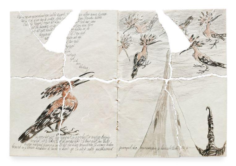 Tekeningen uit het door Vos verscheurde boek Het eiland Hop. Beeld Peter Vos