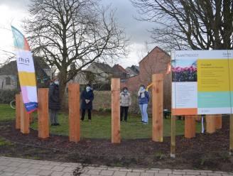 Troostwandeling in Welle en poëzie op begraafplaats van Denderleeuw als steun voor iedereen die treurt om dierbare