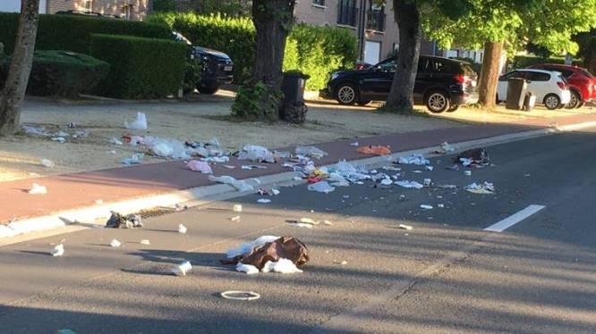 "Afvalintercommunale Interza roept op: ""Bescherm afvalzakken tegen vossen en katten"""